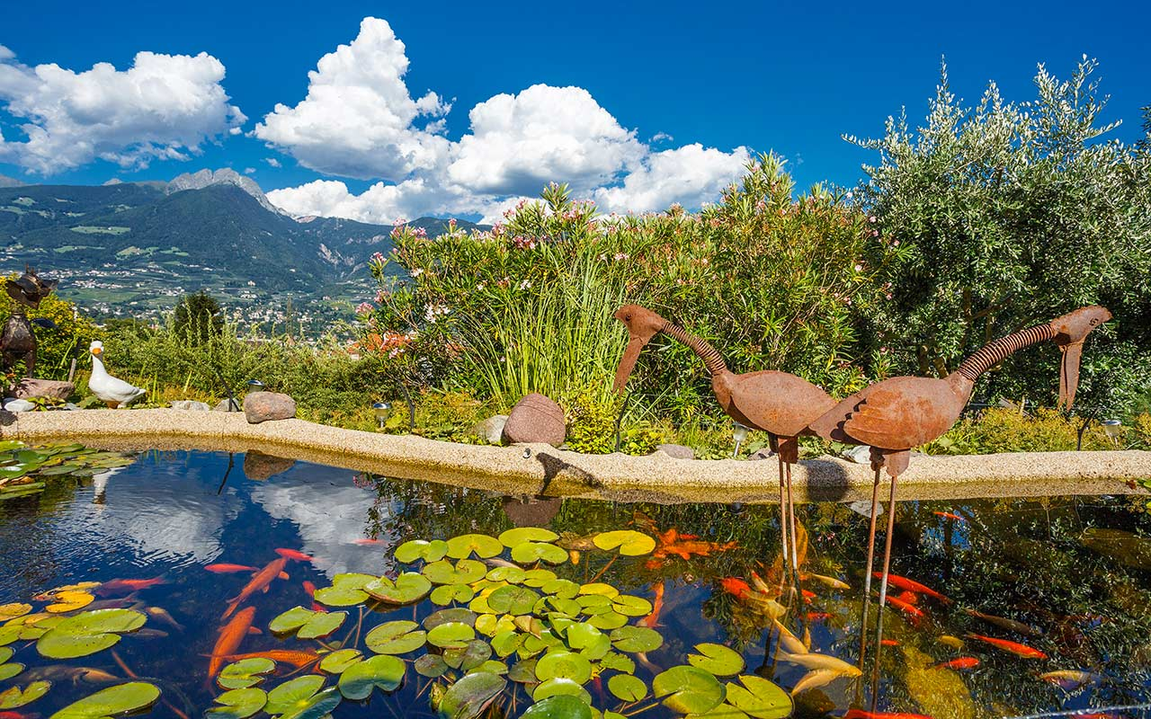 The pond at the Hotel Kristall with views on Merano and surroundings